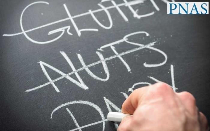 Τα βακτήρια του γαστρεντερικού «όπλο» ενάντια στις διατροφικές αλλεργίες