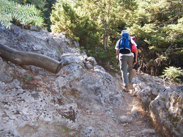 Στο 424 Στρατιωτικό Νοσοκομείο ο ορειβάτης που τραυματίστηκε στον Όλυμπο