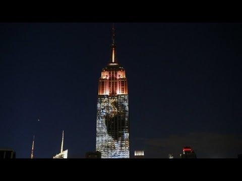 Είδη προς εξαφάνιση «σκαρφάλωσαν» στο Empire State Building -Ενας Ελληνας πίσω από την ιδέα [βίντεο]