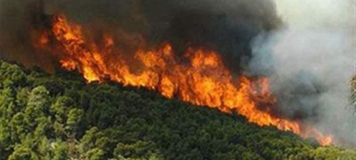 Σε αυτούς τους 7 νομούς υπάρχει μεγάλος κίνδυνος για φωτιά, αύριο