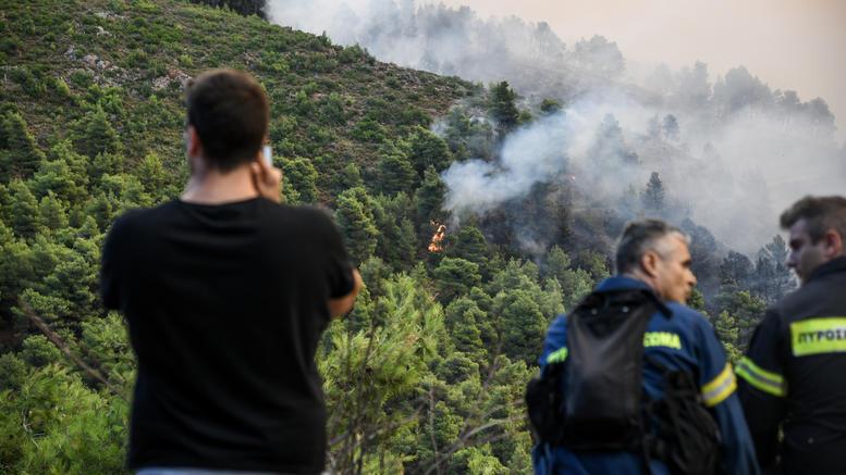 Φωτιά και στα Καλάβρυτα, αντιμετωπίστηκε στη Νέα Μανωλάδα